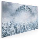obraz z zimowym pejzażem